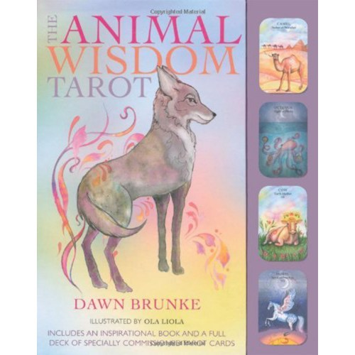The Animal Wisdom Tarot - Book and Cards Box Set_500x500