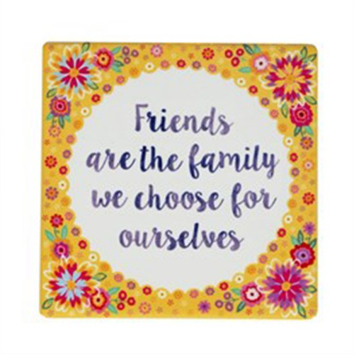 friendsfamilycoaster